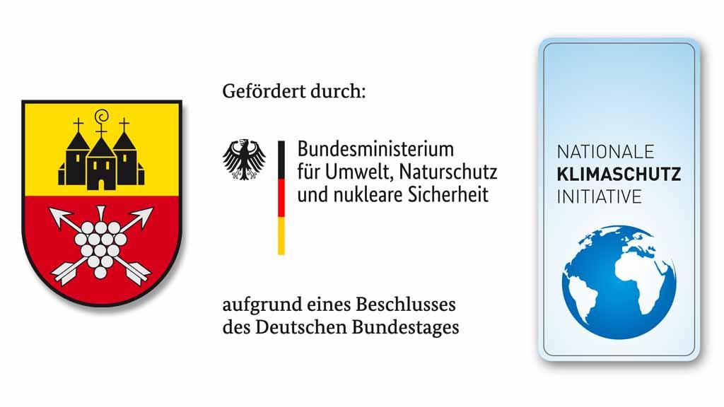 Die Ortsgemeinde Münster-Sarmsheim investiert
