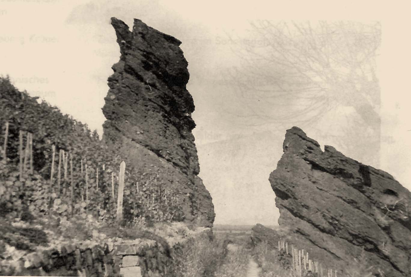 muenster-sarmsheim-geschichte-naturschutzgebiet-tollbach-felsen-1950